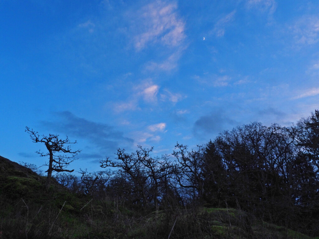 Photo of moon in dusk sky